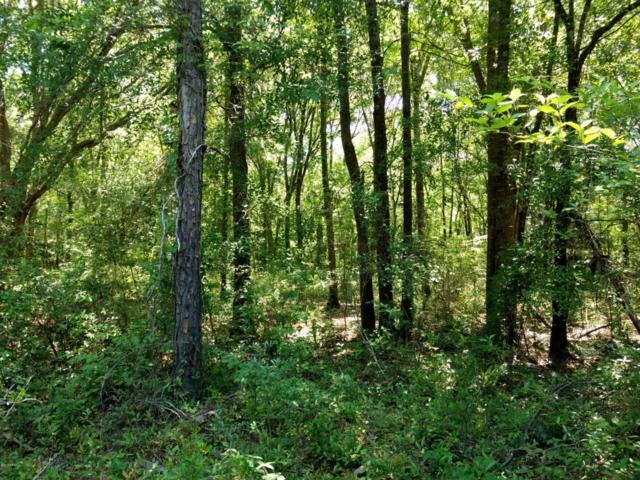 0 Otter Cove, Caryville, FL 32427 (MLS #673185) :: ResortQuest Real Estate