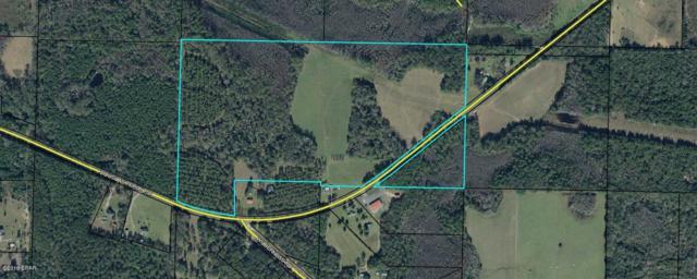 0 Douglas Ferry Road, Caryville, FL 32427 (MLS #673657) :: ResortQuest Real Estate