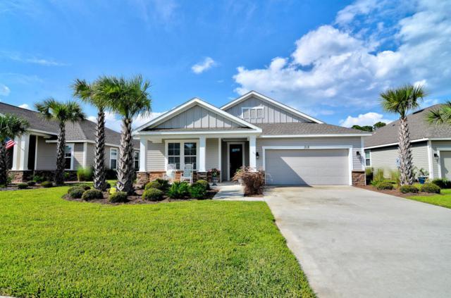 318 Blue Sage Road, Panama City Beach, FL 32413 (MLS #673763) :: ResortQuest Real Estate