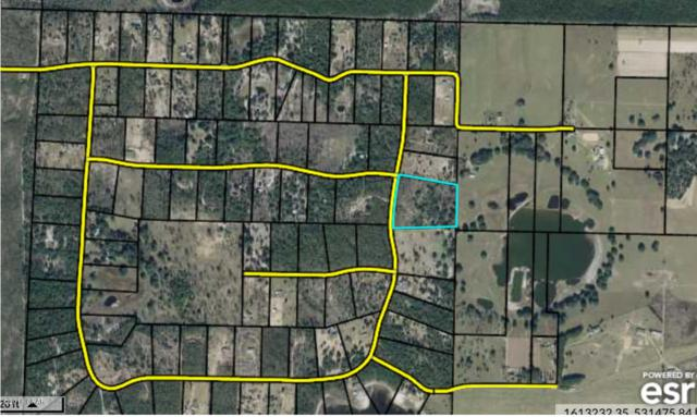 000 Radcliff Circle, Chipley, FL 32428 (MLS #673777) :: Counts Real Estate Group