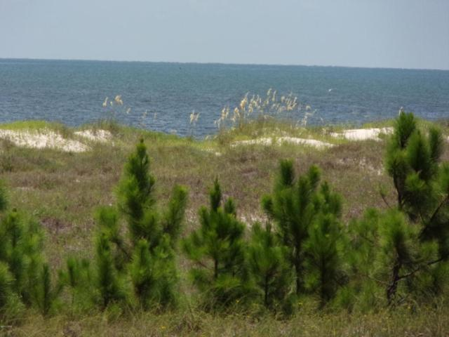 000 Cape San Blas Road, Cape San Blas, FL 32456 (MLS #673932) :: Counts Real Estate Group