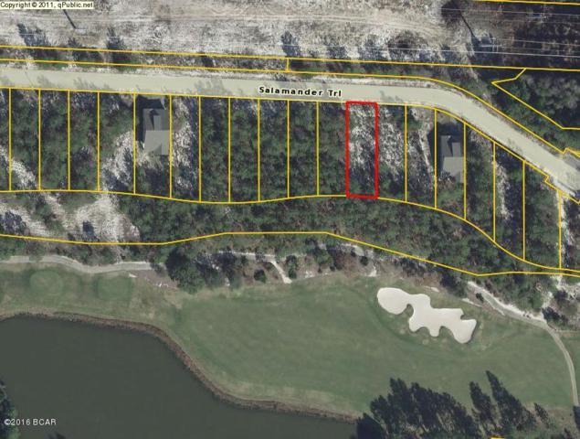1560 Salamander Trail, Panama City Beach, FL 32413 (MLS #674792) :: CENTURY 21 Coast Properties