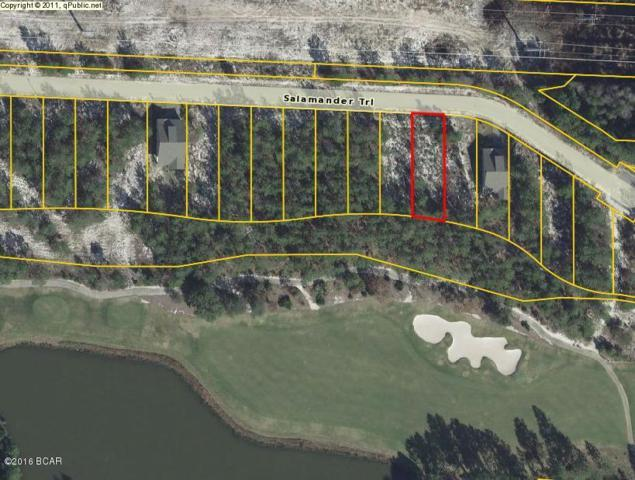 1562 Salamander Trail, Panama City Beach, FL 32413 (MLS #674793) :: CENTURY 21 Coast Properties