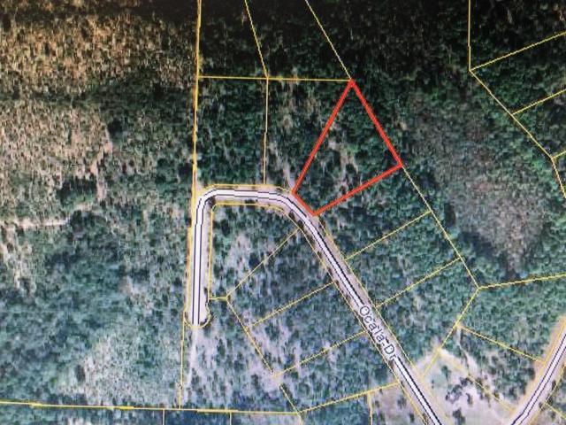 0000 Ocala Drive, Alford, FL 32420 (MLS #674829) :: Counts Real Estate Group