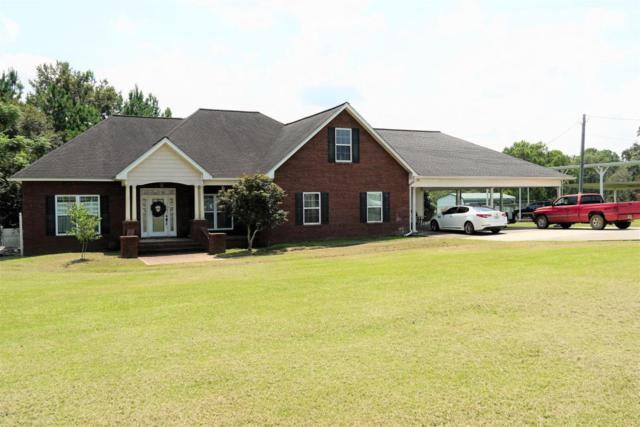4787 Country Lake Drive, Marianna, FL 32446 (MLS #675285) :: Counts Real Estate Group