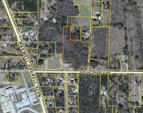 0000 Spring Branch Rd., Bristol, FL 32321 (MLS #676509) :: Berkshire Hathaway HomeServices Beach Properties of Florida