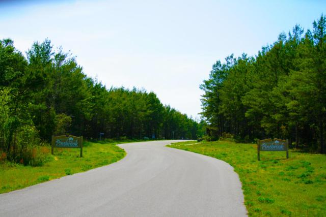13205 Spring Fork Lane, Southport, FL 32409 (MLS #676587) :: Keller Williams Emerald Coast