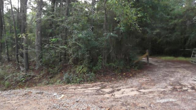 00 Pandora Road, Marianna, FL 32448 (MLS #676727) :: Keller Williams Realty Emerald Coast