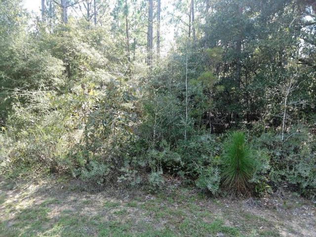 421 Tinker Lane, Chipley, FL 32428 (MLS #676951) :: Coast Properties