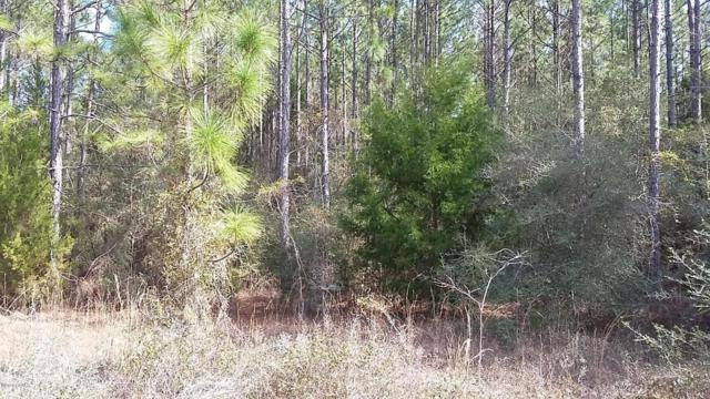20-acres Poll Road, Bonifay, FL 32425 (MLS #677538) :: The Prouse House | Beachy Beach Real Estate