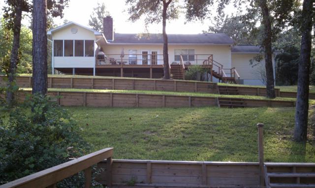 11707 Chipola Park Road, Kinard, FL 32449 (MLS #677759) :: Counts Real Estate Group