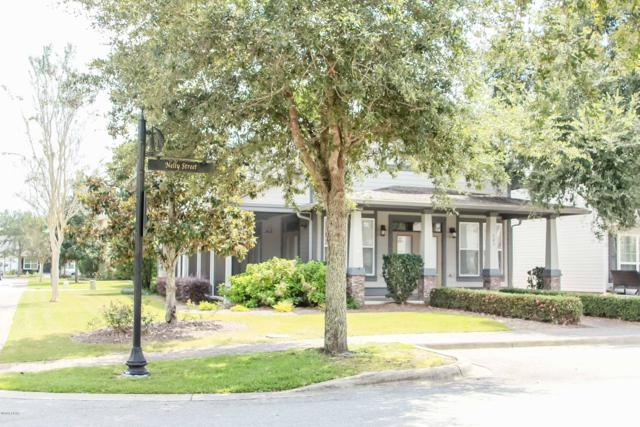242 Fanny Ann Way, Freeport, FL 32439 (MLS #677971) :: Counts Real Estate Group
