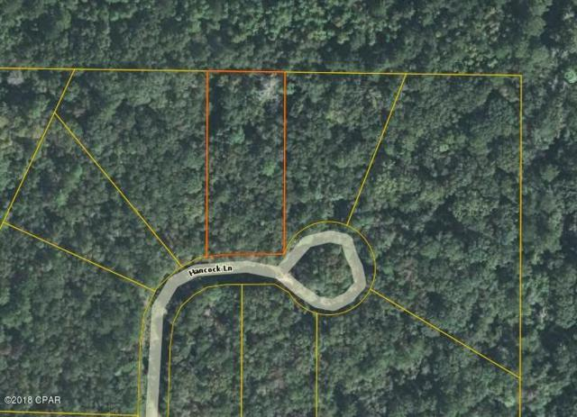 0001 Hancock Lane, Marianna, FL 32448 (MLS #678058) :: Counts Real Estate Group