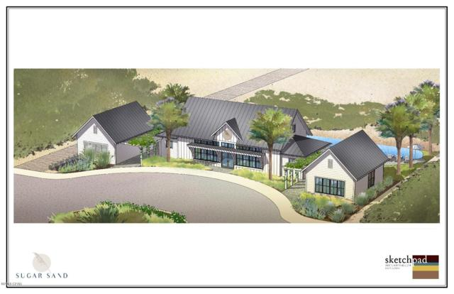 114 Dunes Drive, Mexico Beach, FL 32456 (MLS #678634) :: Counts Real Estate Group, Inc.