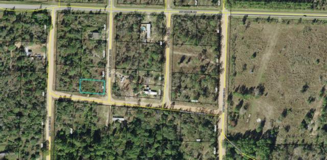 000 Lake Mckenzie, Altha, FL 32421 (MLS #678642) :: Counts Real Estate Group