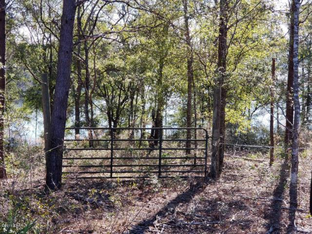 000 Woodymarion Drive, Chipley, FL 32428 (MLS #679452) :: Counts Real Estate on 30A