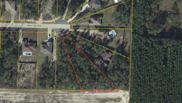 238 White Oaks Boulevard, Southport, FL 32409 (MLS #679903) :: Counts Real Estate Group