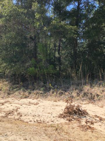 000 Chapel Branch Road, Vernon, FL 32462 (MLS #680031) :: Keller Williams Realty Emerald Coast