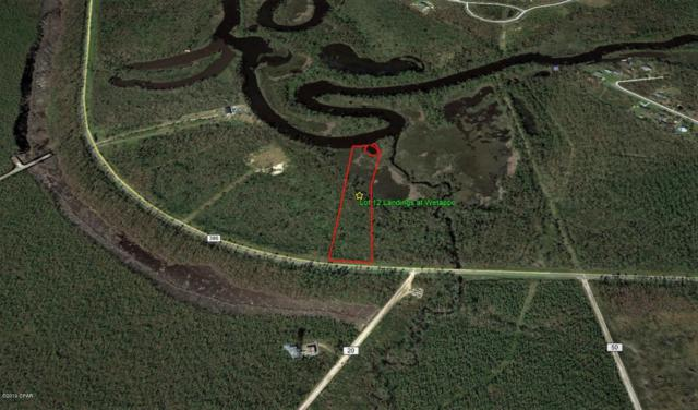 12 Cr 386 North, Wewahitchka, FL 32465 (MLS #680586) :: Scenic Sotheby's International Realty