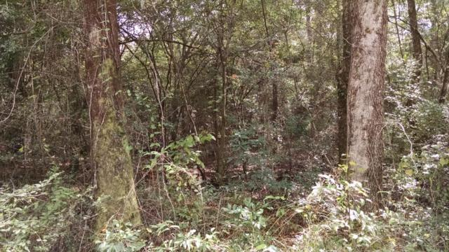 00 Raccoon Run, Caryville, FL 32427 (MLS #680686) :: Keller Williams Emerald Coast