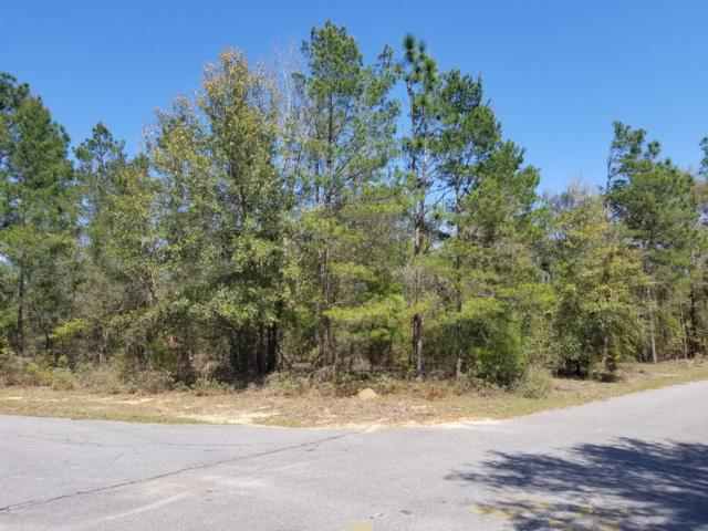 000 Spendabuck Court, Chipley, FL 32428 (MLS #681256) :: Counts Real Estate Group