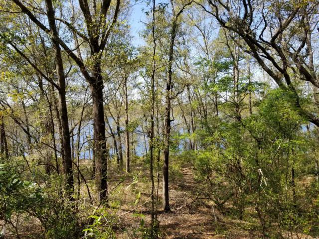 A71 Quail Ridge Drive, Chipley, FL 32428 (MLS #681259) :: CENTURY 21 Coast Properties