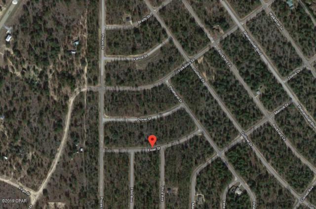 20 Elder Street, Chipley, FL 32428 (MLS #681318) :: CENTURY 21 Coast Properties