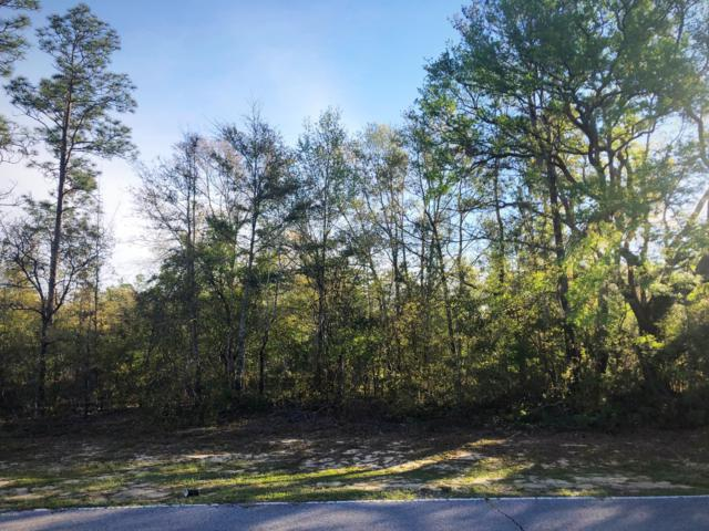 Lot 27 Shenandoah Boulevard, Chipley, FL 32428 (MLS #681423) :: Scenic Sotheby's International Realty