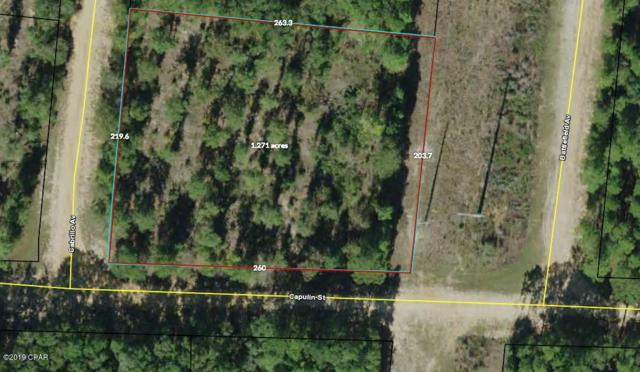 000 Cabrillo Avenue, Alford, FL 32420 (MLS #681624) :: Keller Williams Realty Emerald Coast