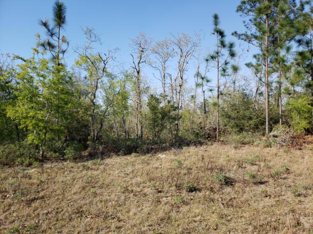 000 Carson Street, Chipley, FL 32428 (MLS #681967) :: Counts Real Estate Group