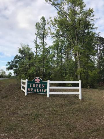 0 Green Meadows Trail, Marianna, FL 32446 (MLS #682023) :: ResortQuest Real Estate