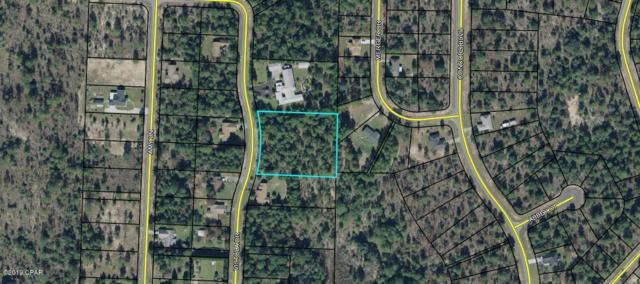 00 Vistula Drive, Chipley, FL 32428 (MLS #682040) :: Counts Real Estate Group