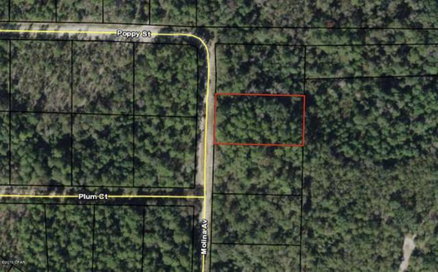 0000 Molina Avenue, Marianna, FL 32448 (MLS #682521) :: Counts Real Estate Group