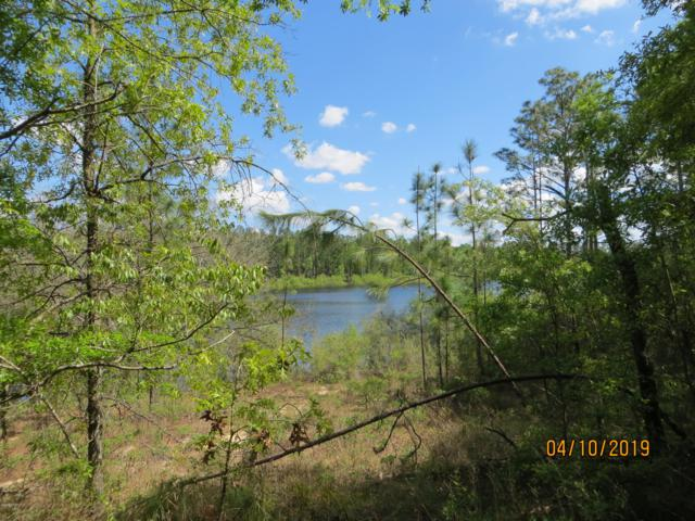 TBD 0011 Payne Lake Road, Chipley, FL 32428 (MLS #682563) :: Keller Williams Emerald Coast