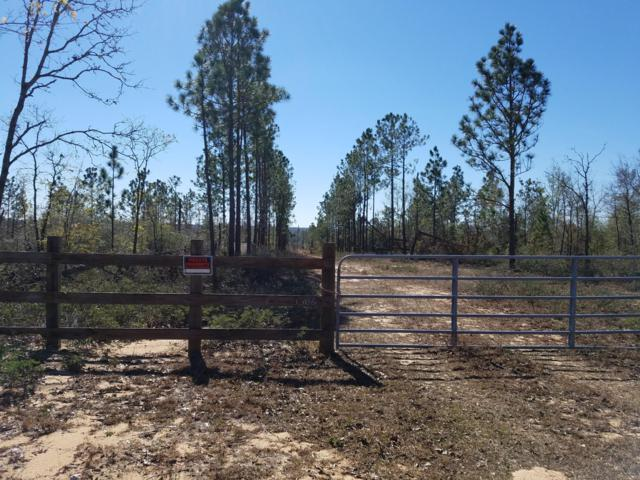 3306 Twin Ponds Road, Marianna, FL 32448 (MLS #682853) :: Scenic Sotheby's International Realty