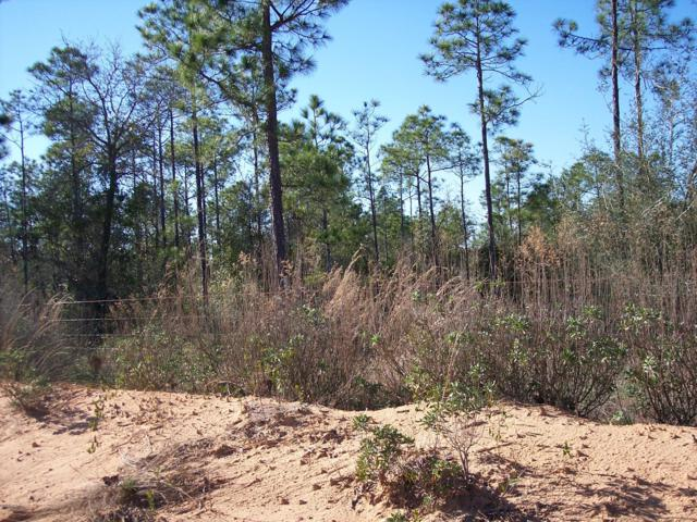 Lot 07 Lakeside Drive, Chipley, FL 32428 (MLS #683050) :: Keller Williams Realty Emerald Coast