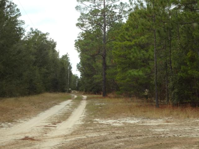 000 Otter Creek Road, Ebro, FL 32437 (MLS #683730) :: Counts Real Estate Group