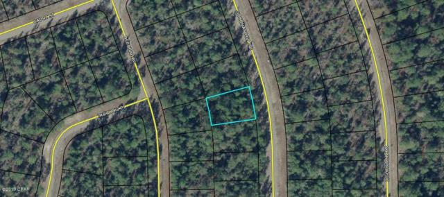 Lot 16 Goodman Hill Road, Chipley, FL 32428 (MLS #684528) :: Counts Real Estate Group