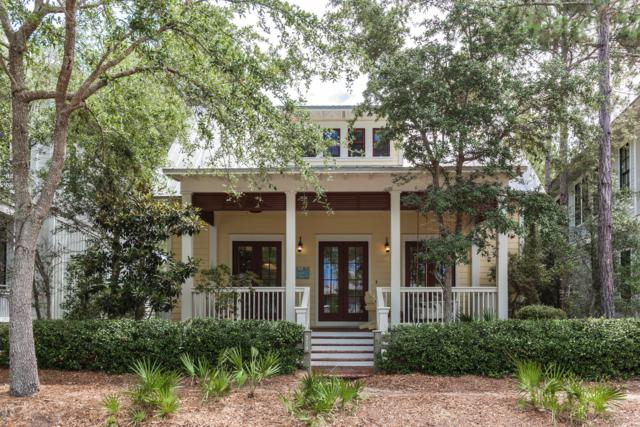 214 Spartina Circle, Santa Rosa Beach, FL 32459 (MLS #684796) :: Scenic Sotheby's International Realty