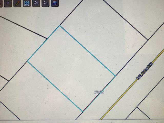 00 Falcon Drive, Chipley, FL 32428 (MLS #685187) :: ResortQuest Real Estate