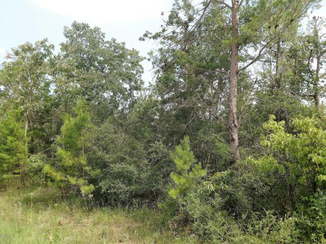 0000 NW Lake Lillian Road, Fountain, FL 32438 (MLS #685398) :: Scenic Sotheby's International Realty