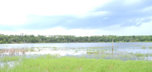 XXX Lucas Lake Road, Chipley, FL 32428 (MLS #685533) :: ResortQuest Real Estate
