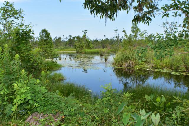 10717 Vickery Lane, Youngstown, FL 32466 (MLS #685537) :: ResortQuest Real Estate
