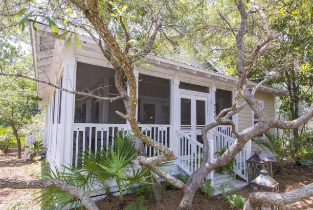 360 N Andalusia Avenue, Santa Rosa Beach, FL 32459 (MLS #685818) :: Scenic Sotheby's International Realty