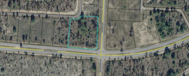 Tbd Sunny Hills Boulevard, Chipley, FL 32428 (MLS #685945) :: Counts Real Estate Group