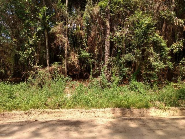 0 Muir Lane, Bonifay, FL 32425 (MLS #686619) :: Scenic Sotheby's International Realty