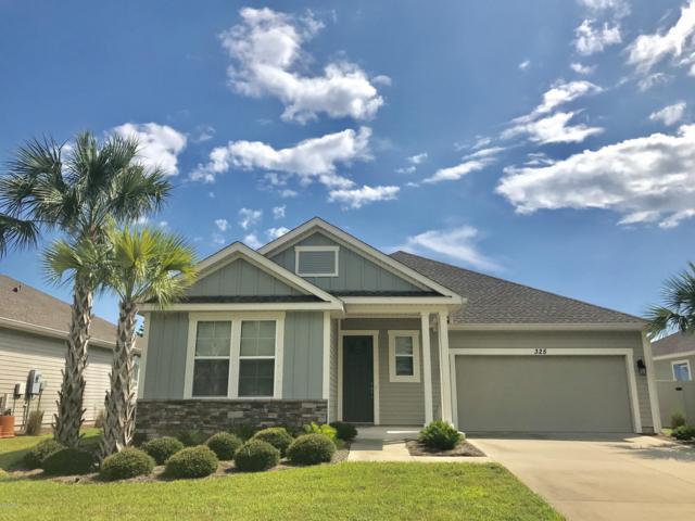 325 Blue Sage Road, Panama City Beach, FL 32413 (MLS #687079) :: CENTURY 21 Coast Properties