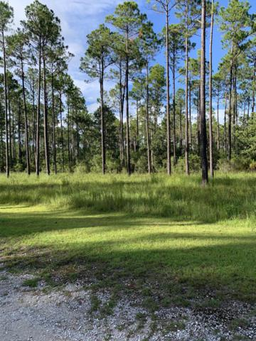 7703 Magnolia Pond Trail, Panama City Beach, FL 32413 (MLS #687083) :: Berkshire Hathaway HomeServices Beach Properties of Florida