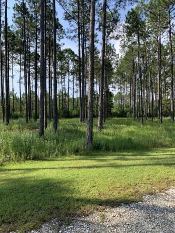 6619 Button Buck Trail, Panama City Beach, FL 32413 (MLS #687084) :: Counts Real Estate on 30A