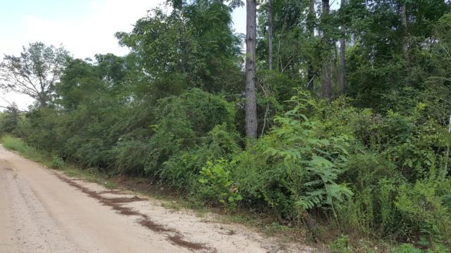 Graceville, FL 32440 :: Keller Williams Emerald Coast